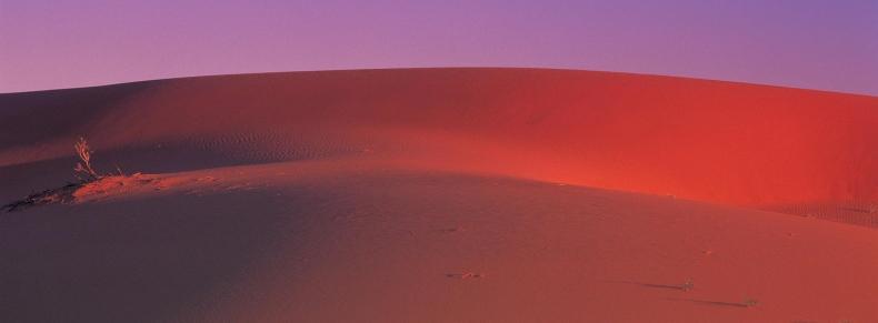 Auto tour dans le désert