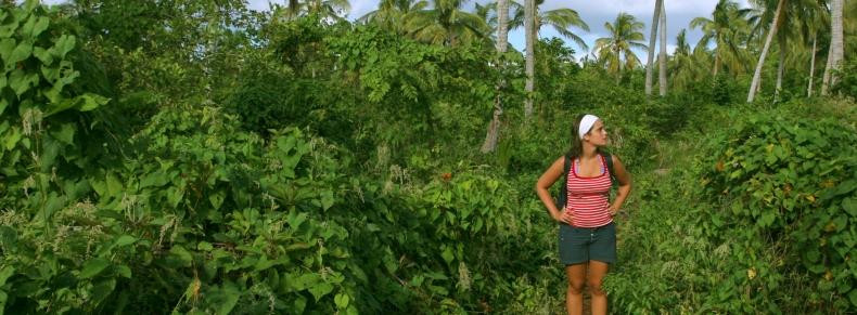 Costa Rica - Monteverde
