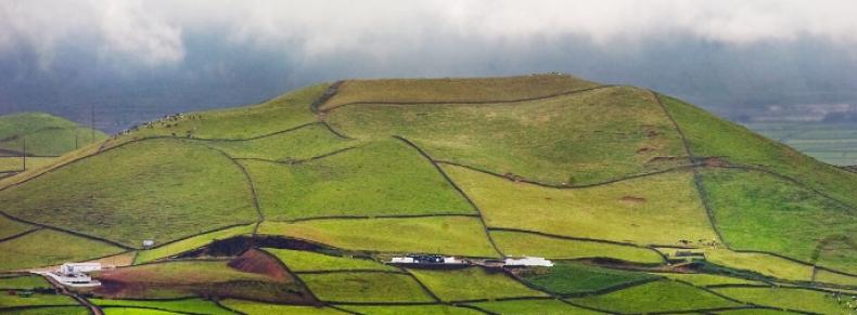 Paysages agricoles sur l'île de Terceira