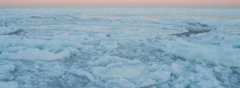 Arctic - Icefloe