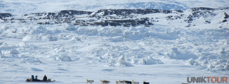 Traineau à chien à Iqaluit