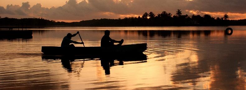 Kayak à Dominical
