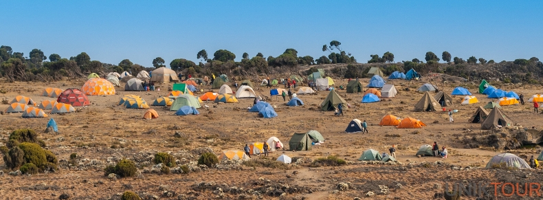 Shira Camp on Machame route