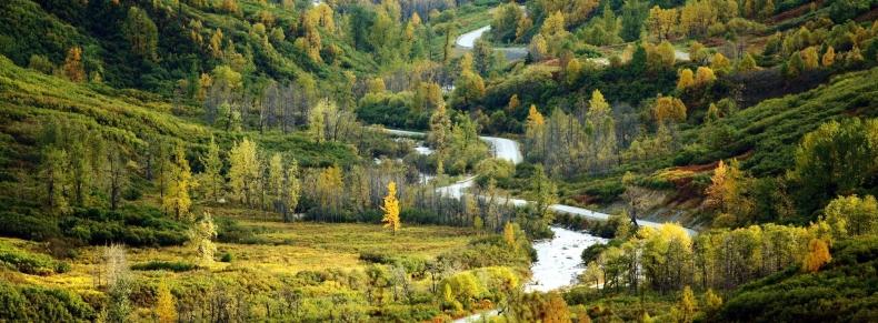 Alaska - Parc Naturel de Chugach