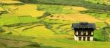 Rice fields and farm house, Bhutan