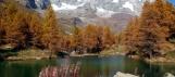 Alpes - Monte Cervino