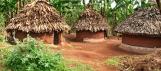 Habitat traditionnel