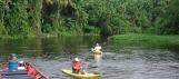 Delta de l'Orénoque